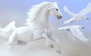 Beautiful-Horse-horses-22410557-1280-800
